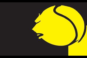 logo_fete-le-mur